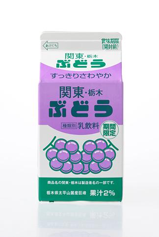 関東・栃木ぶどう(500ml)